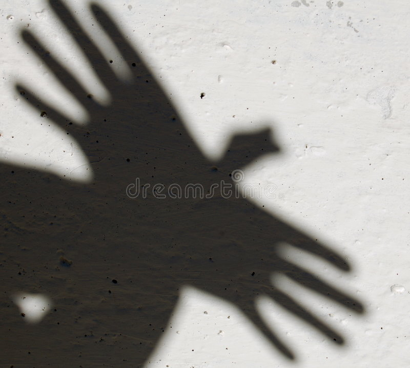 Shadow of animal royalty free stock photo