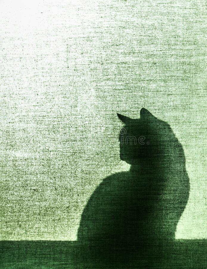 Shadow of a cat on canvas blind - vertical. Silhouette of a cat sitting on window sill - shadow against green semi transparent canvas blind - vertical stock photography