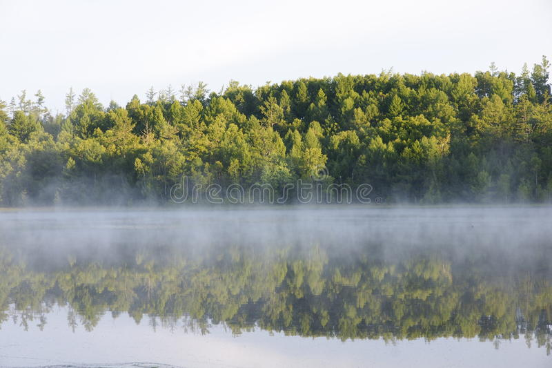 Shadow and fog royalty free stock images