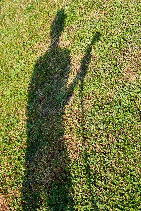 Shadow of a gardener on the meadow royalty free stock image
