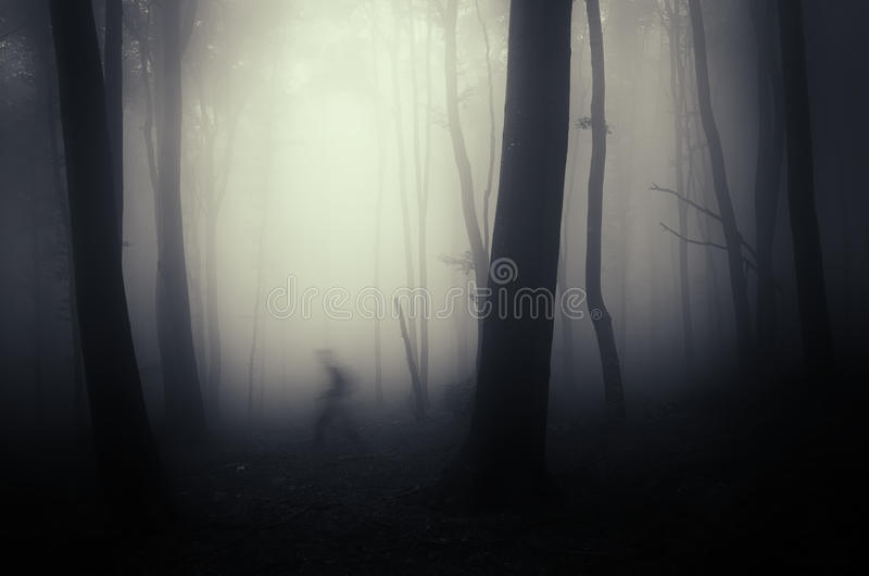 Shadow ghost on Halloween in dark forest with fog. Shadow ghost on Halloween in dark forest with mysterious fog stock image
