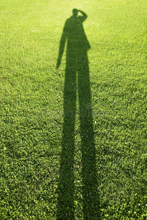 Shadow on the grass
