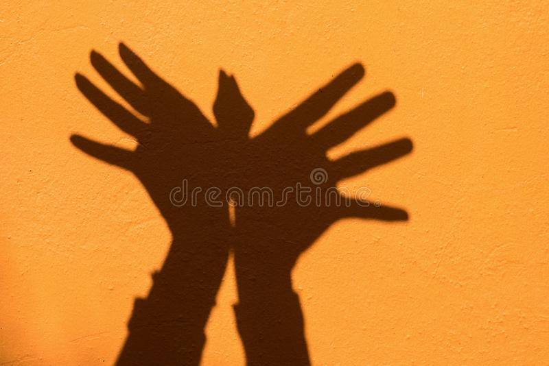 Shadow of hand symbol mean animal like a Bird on Orange wall background royalty free stock images