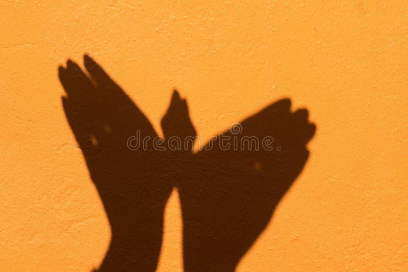 Shadow of hand symbol mean animal like a Bird on Orange wall background stock photos
