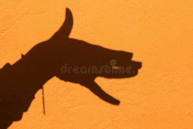 Shadow of hand symbol mean animal like a dog on Orange wall back royalty free stock photo