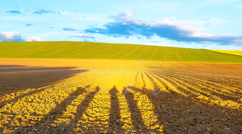 Shadow of a men on a brown plowed field at sunset. Shadow of a men on a brown plowed field at sunset royalty free stock images