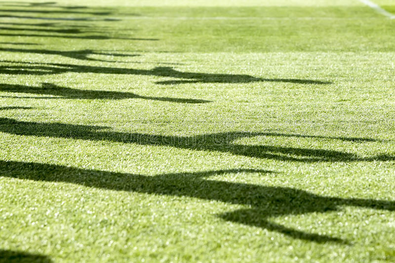 Shadow of men running on green field.  royalty free stock photography