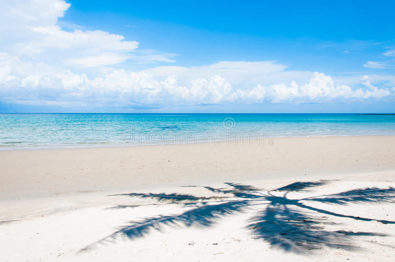 Shadow Of Palm Tree Over Tropical White Sand Beach Stock Photo