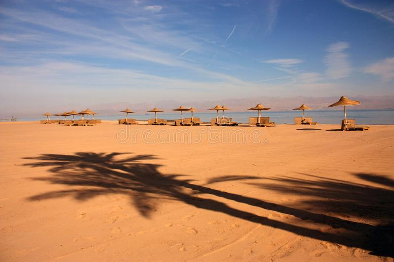Shadow of a palm tree on the sand against the background of umbrellas from the sun on the Red Sea. stock photography