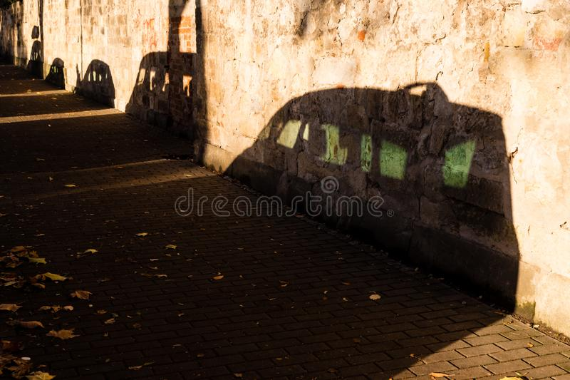 Shadow of parked cars at sunrise.  stock photo