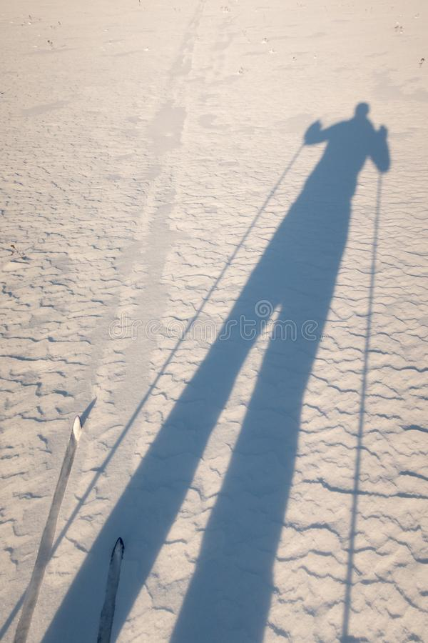 The shadow of a tour skier. Going cross country skiing. royalty free stock photo