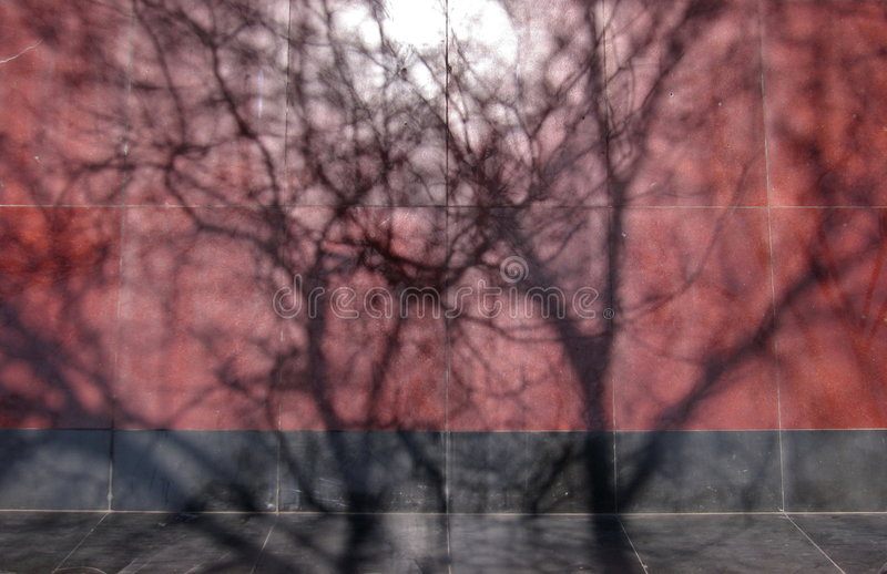 Download Shadow on the wall-2 stock photo. Image of under, shadow - 4805308