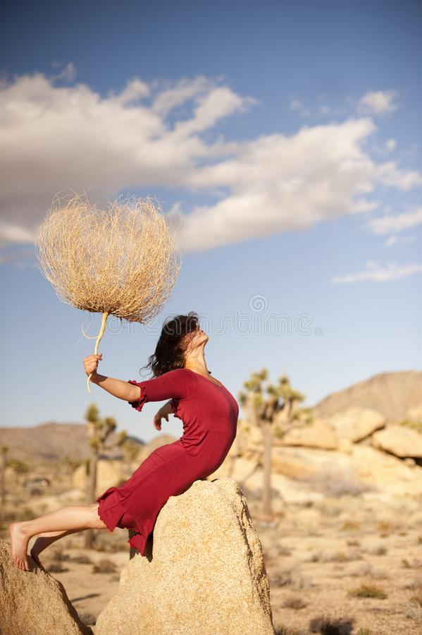 Red Dress Desert Shadow Woman  royalty free stock photos
