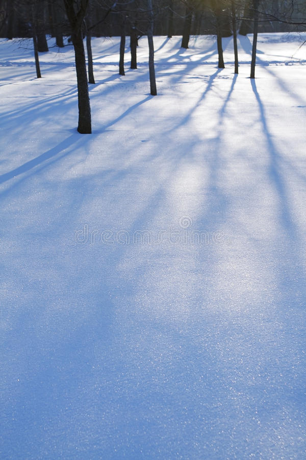 Free Shadows Stock Photo - 24122150