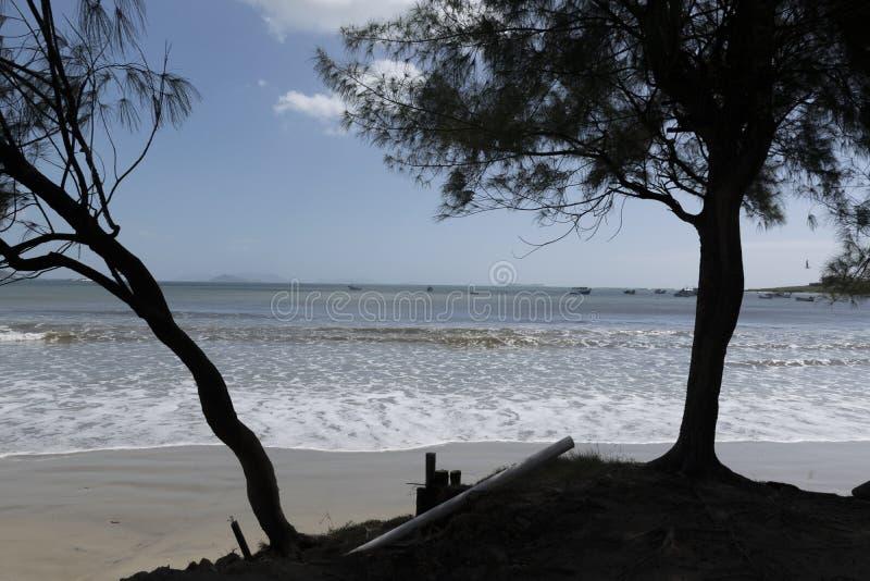 Shadows on the beach stock photos