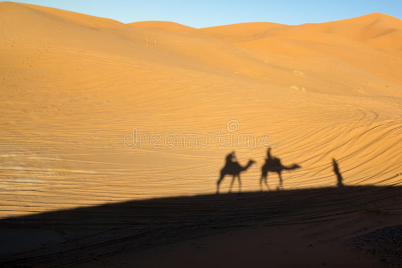 Shadows of the camel ride stock photo