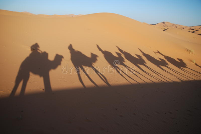 Download Shadows of camel riders stock image. Image of heat, morocco - 13748375