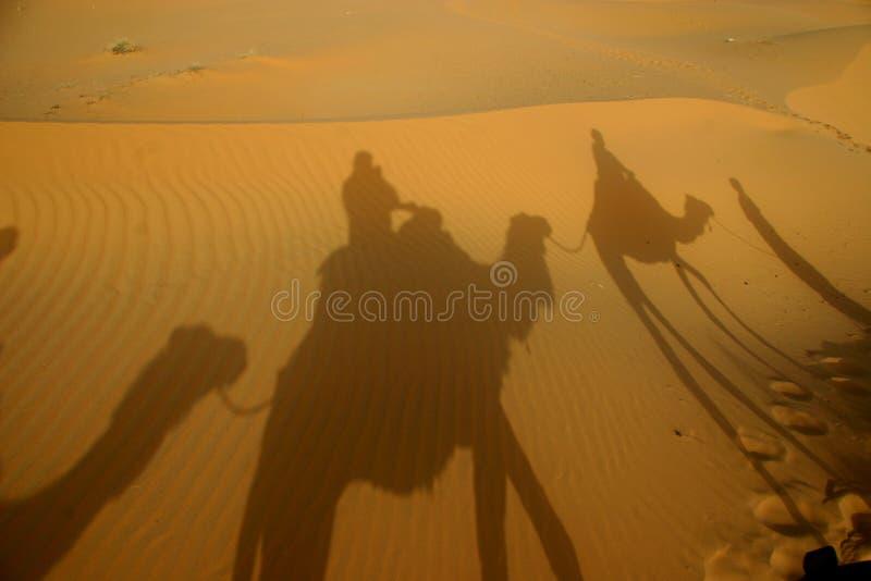 Shadows in the desert stock image