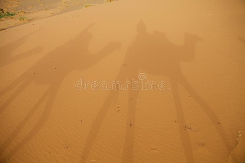 Download Shadows On The Desert Sand Stock Images - Image: 26810044