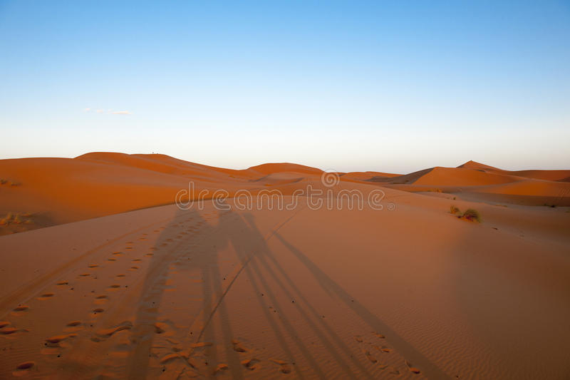 Shadows On Dunes Royalty Free Stock Images