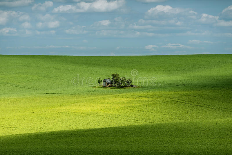 Shadows on field and a small shed. stock photo