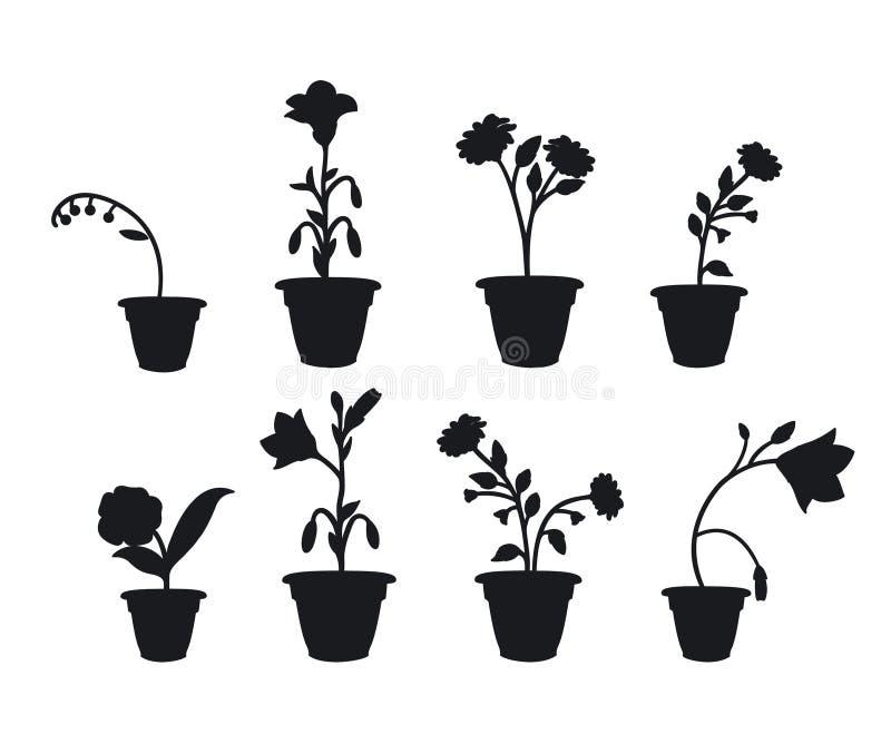 Shadows flower pots vector illustration