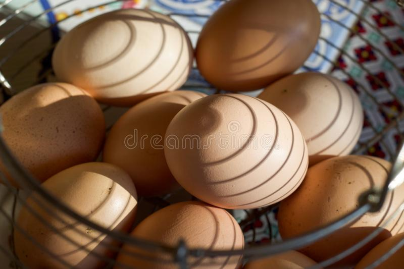 Shadows on a group of chichen eggs in a container stock image