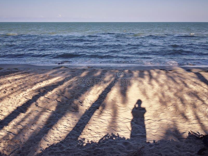 The shadows of morning sun beach.  royalty free stock photo