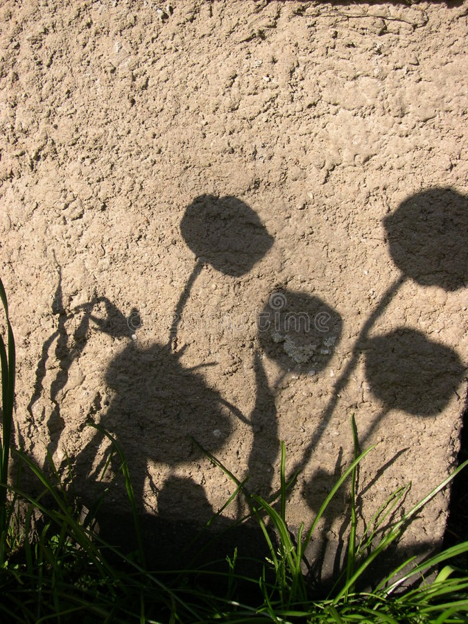 Free Shadows On The Wall Royalty Free Stock Image - 729996