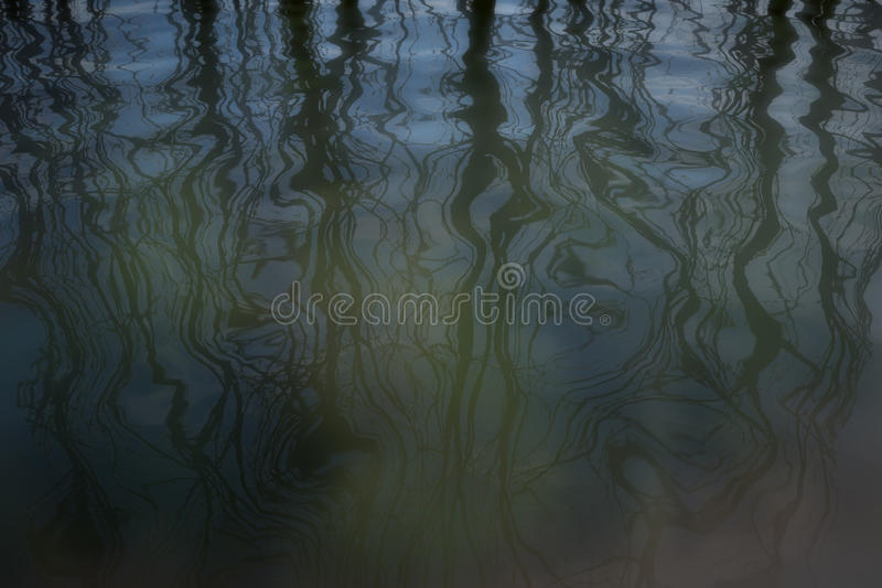 Download Shadows stock illustration. Image of winter, morning - 35098339