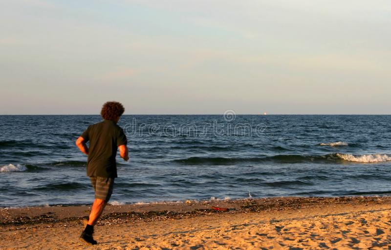Shaggy Beach Runner Free Stock Photography