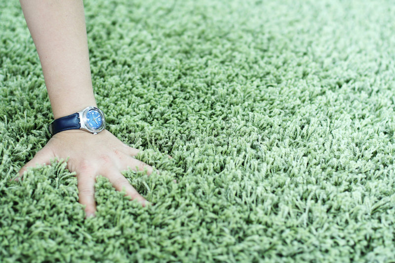 Shaggy carpet and watch. Woman hand with watch on thick green shaggy carpet stock photo