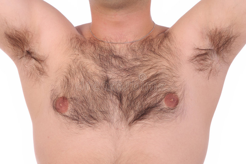 Shaggy chest. Person with shaggy chest and in close up royalty free stock photography