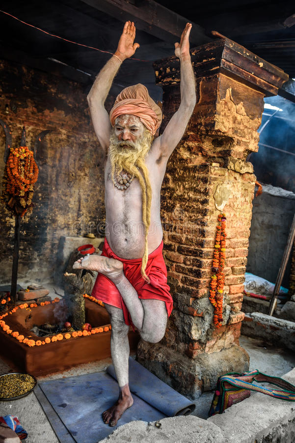 Shaiva sadhu (holy man) exercises in Pashupatinath Temple, Kath stock photos
