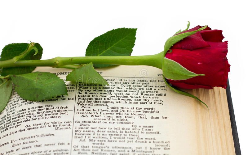 Shakespeare Romeo Juliet Red Rose royalty free stock images