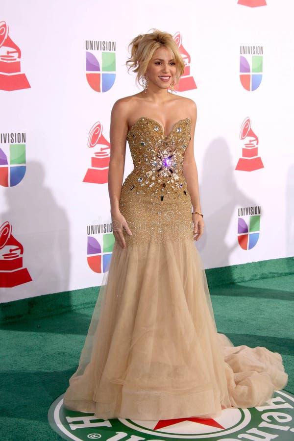 Shakira stock afbeelding