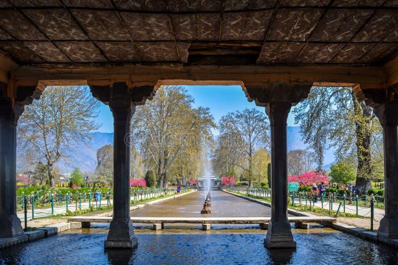 Shalimar庭院,斯利那加,克什米尔 图库摄影