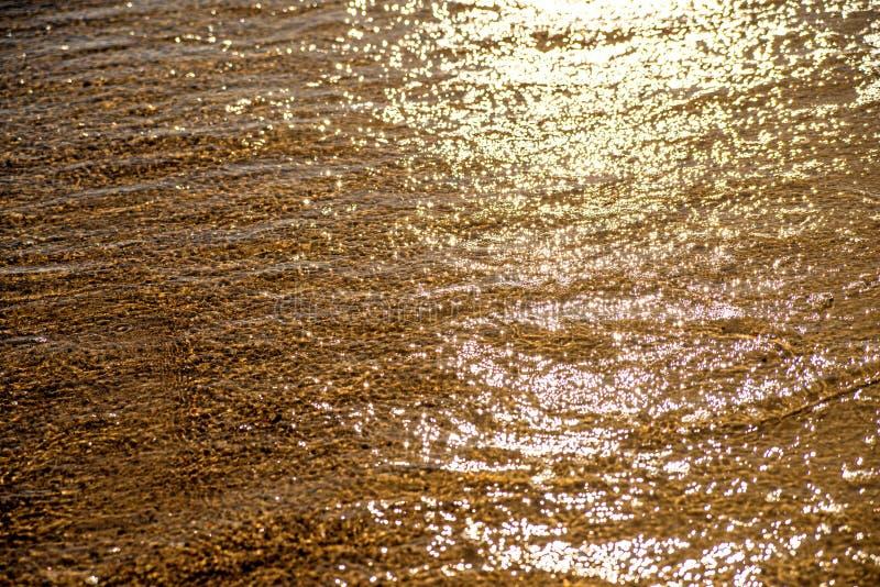 Shalllowwater van het overzees royalty-vrije stock foto's