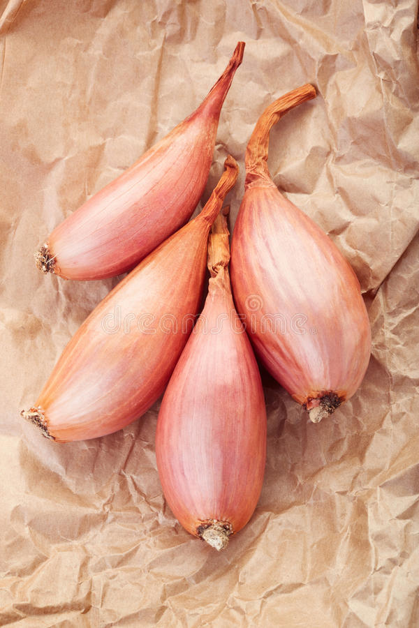 Shallot onions group on brown paper royalty free stock photo
