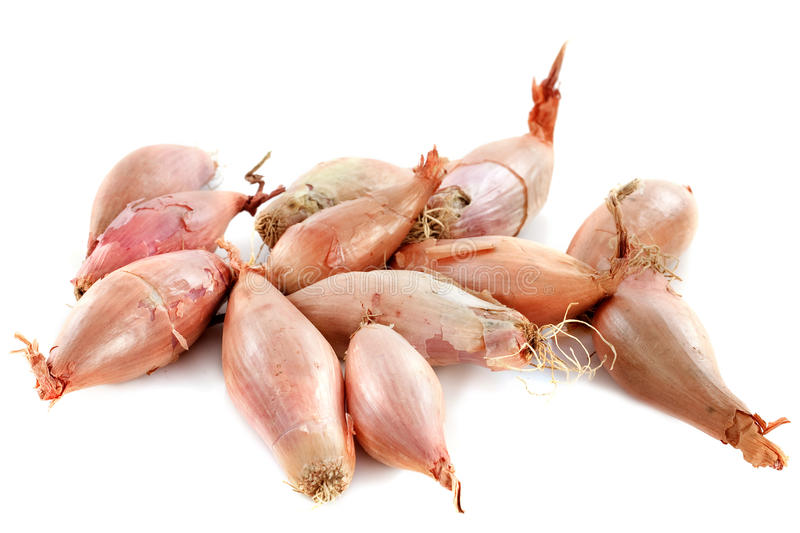Download Shallots stock image. Image of background, shallots, group - 27656763