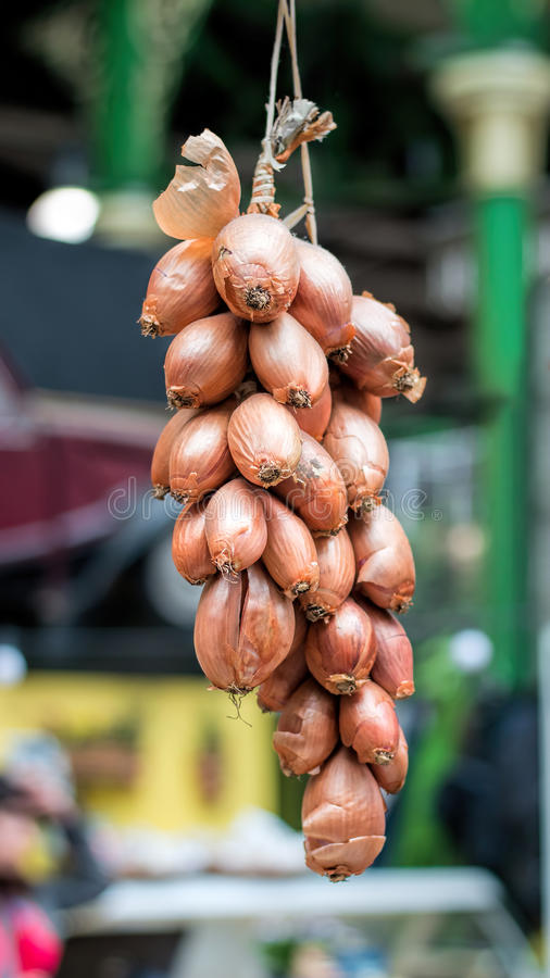Shallots onions hanging to dry at food market stock photo