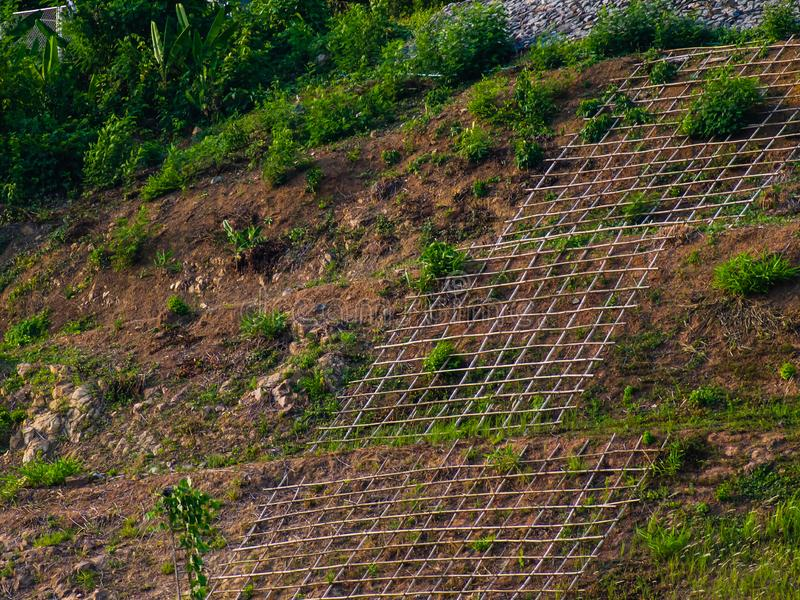 Shallow cellular confinement system to prevent soil erosion on slope. Landscape stock images