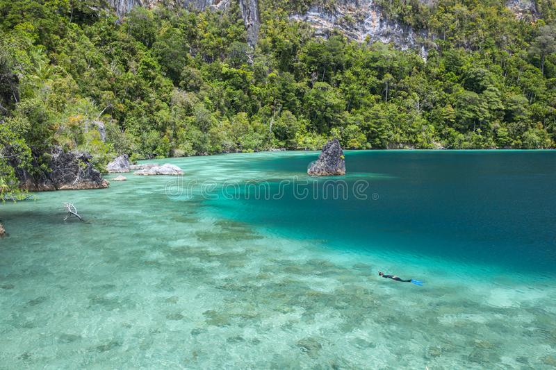 Shallow Coral Reef, Snorkeler and Islands in Raja Ampat. A snorkeler explores a shallow reef flat among the rugged limestone islands of Raja Ampat, Indonesia royalty free stock images