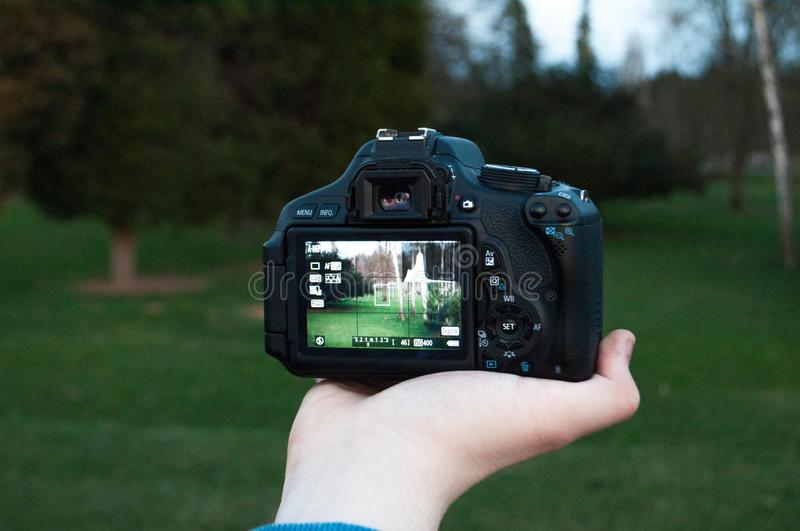 Shallow Focus Photography of Black Dslr Camera on Person's Right Hand royalty free stock images