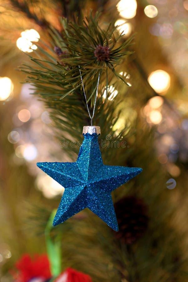 Shallow Focus Photography of Blue Star Christmas Tree Decor royalty free stock photo