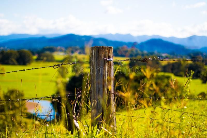 Shallow Focus Photography of Brown Wooden Pole With Grey Barb Wires stock photos