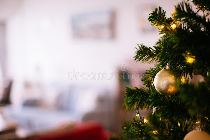 Shallow Focus Photography of Christmas Tree royalty free stock photos