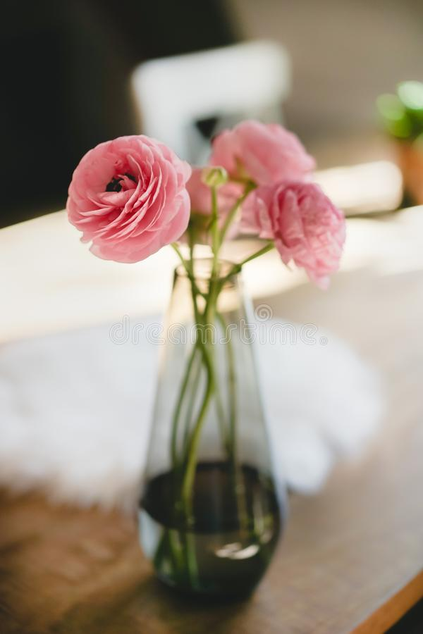Shallow Focus Photography Of Three Pink Flowers royalty free stock images