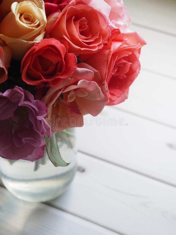 Shallow Focus of Red and Pink Flowers royalty free stock photo