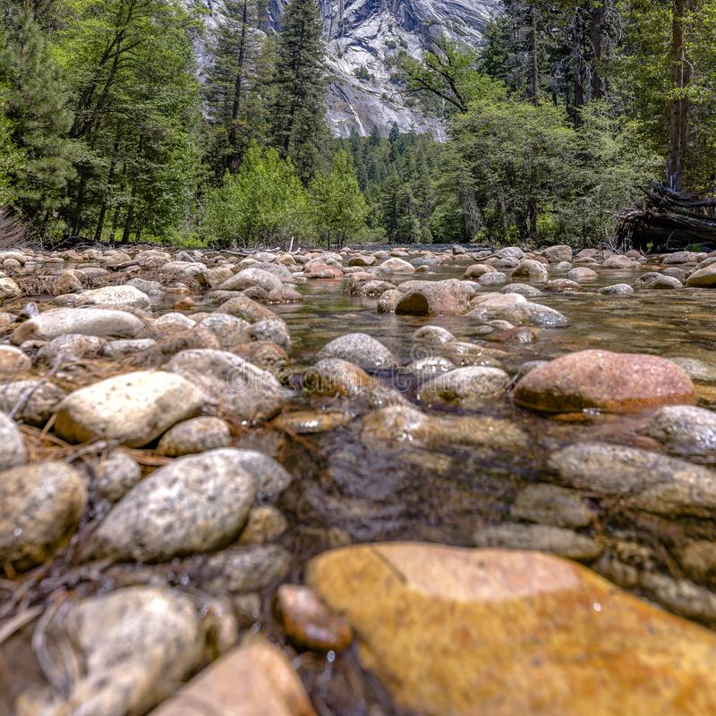 Shallow stream with trees and mountain in Yosemite royalty free stock images